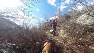 Ferguson Canyon Off Trail